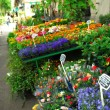 Flower stand in Paris — Stock Photo #4824598