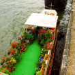 Houseboats in Paris — Foto de Stock