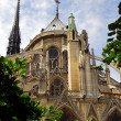 Notre Dame de Paris — Stock Photo #4824637