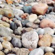 Royalty-Free Stock Photo: Beach pebbles