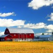 Red barn — Stockfoto #4824727