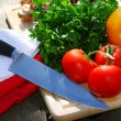 Fresh vegetables — Stockfoto #4824870