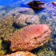 Rocks under water — Stock Photo #4824888