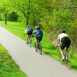 Bicycling in a park - Stockfoto