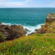 Stock Photo: Atlantic coast in Brittany