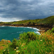 Atlantic coast in Brittany — Stock Photo #4825062