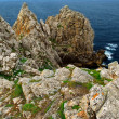 Atlantic coast in Brittany — Stockfoto