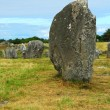 Megalithic monuments in Brittany — Stock Photo #4825115