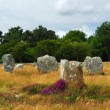 Megalithic monuments in Brittany — Stock Photo #4825116