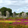 Megalithic monuments in Brittany — Stock Photo #4825119