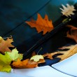 Fall leaves on a car — Foto Stock