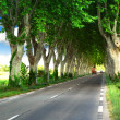 French country road — Stock Photo