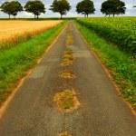 Road in rural France — Stock Photo #4825455