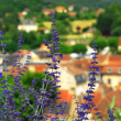 Rooftops in Sarlat, France - Stock Photo