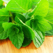 Mint sprigs - Stock Photo