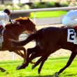 Stock Photo: Horses racing