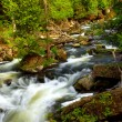 River rapids — Stock Photo #4825750