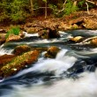 River rapids — Stock Photo #4825753