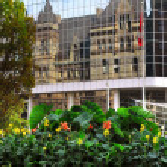 Toronto — Stock Photo #4825830