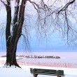 Winter park — Stock Photo #4825905