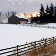 Rural winter landscape — Foto de Stock