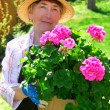 Senior woman gardening — Stock Photo #4826070