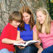 Family reading a book — Stock Photo #4826093