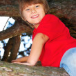 Boy climbing a tree — Stock Photo