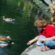 Stock Photo: Children feeding ducks