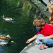 Children feeding ducks — Stock Photo