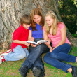 Family reading a book — Stock Photo #4826179