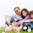 Happy family — Stock Photo #4826212