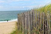 Plaża ogrodzenia — Zdjęcie stockowe