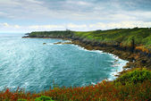 Atlantic coastline in Brittany, France — 图库照片