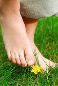 Barefoot — Photo