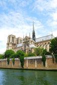 Catedral de notre dame — Foto Stock