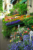 Flower stand in Paris — Stock Photo