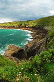 Brittany coast — Stock Photo