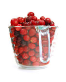 Cranberries in a cup — Stock Photo
