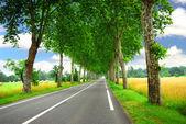 法国国家道路 — 图库照片