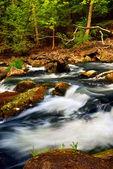 River rapids — Stock Photo