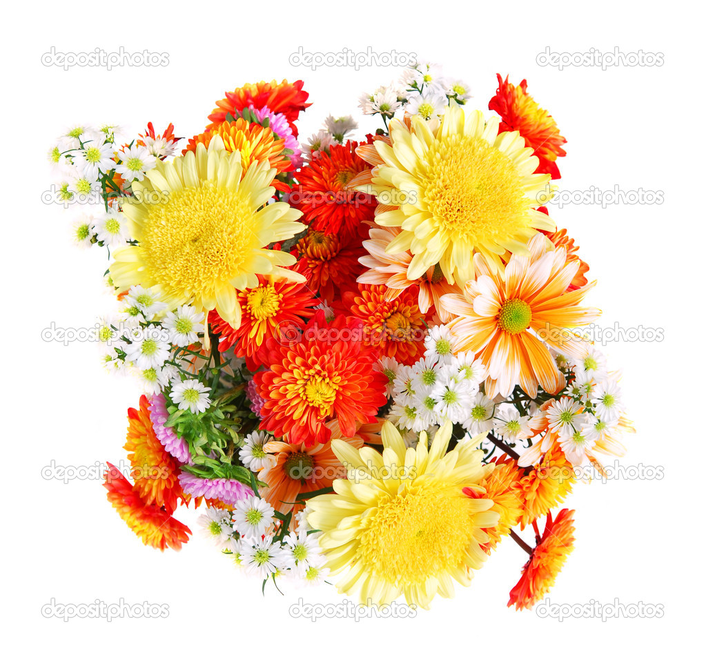 Bouquet of flowers, top view, isolated on white background — Photo #4824260