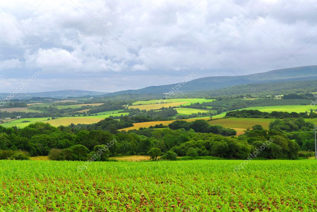 Scenic view on summer agricultural landscape in Brittany, France  Stock fotografie #4825131