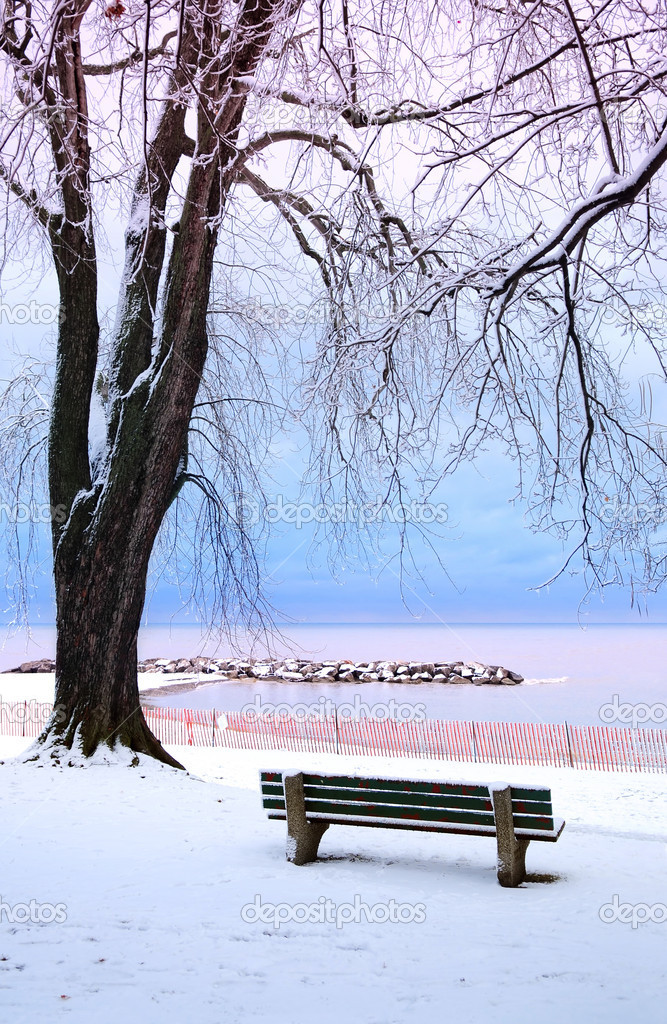 Winter park with a bench covered with snow. Beach area, Toronto, Canada. — Stock Photo #4825905