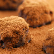 Chocolate truffles — Stock Photo #4947464