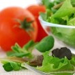 Baby greens and tomatoes - Stock Photo