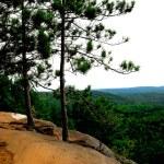 Pines kayalıkları üzerinde — Stok fotoğraf