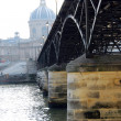Paris Seine — Stock Photo #4947758