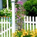 Garden — Stock Photo #4948192
