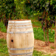 Wine barrel at vineyard — Stok fotoğraf